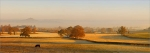 Glastonbury Tor, Autumn Mist Z51 Print on paper