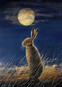 Midnight Hare