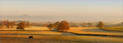 Glastonbury Tor, Autumn Mist Z51 Canvas print