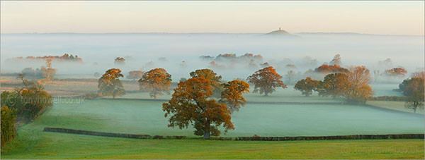 Glastonbury Tor, Mist 8541 Print on paper