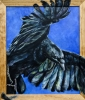 Crow by Deborah Robinson